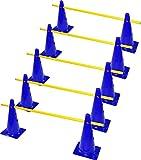 RHINOS sports Steckhürdenset 5er   10 Blaue Kegel: 38cm   5 gelbe Stangen: 1m