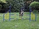 Procyon Agility Hürde für Hunde Profi-Training-Set FCI konform Hürden Hundeport