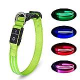 LED Hundehalsband Wiederaufladbare USB Leuchthalsband 100% Wasserdichtes Leuchtendes Hunde Halsband Einstellbare Super Helle für Kleine Mittlere Große Hunde - Grün - XS