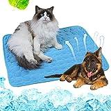 Kühlmatte Hund, Kühlmatte, Kühlmatte für Hunde, Pet Cooling Mat, Haustier Katzen, Strapazierfähige Kühlmatte für Alle Hunde und Katzen, Damit Ihr Haustier Diesen Sommer Kühl Bleibt, 70 x 55 cm