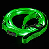 Blazin LED Sicherheitsleine für Hunde, wiederaufladbar über USB, 1,8 m, wasserdicht – Gefahr vermeiden – Grün