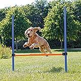 Trixie 3207 Dog Activity Agility Hürde, Kunststoff, 123 × 115 cm, ø 3 cm, blau/orange