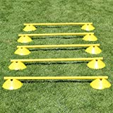 Mini-Hürden 5er Set, gelbe Markiermulden und Stangen 100 cm, für Agility-Training (gelb/gelb)