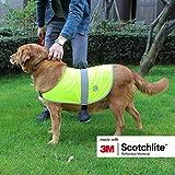 Salzmann reflektierende Hundeweste, ausgestattet mit 3M Scotchlite, reflektierende Hundejacke in verschiedenen Größen für alle Hunderassen (2 Stück pro Set), Größe XS