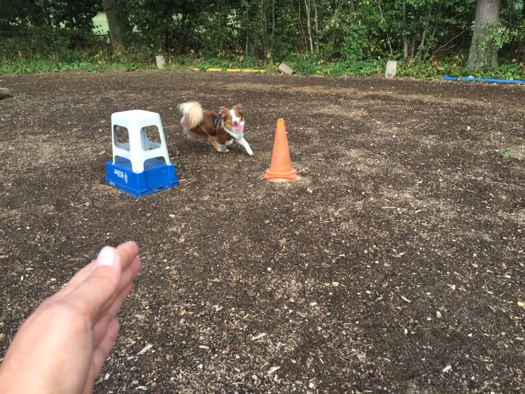 Gartenspielzeug Kommando Herum