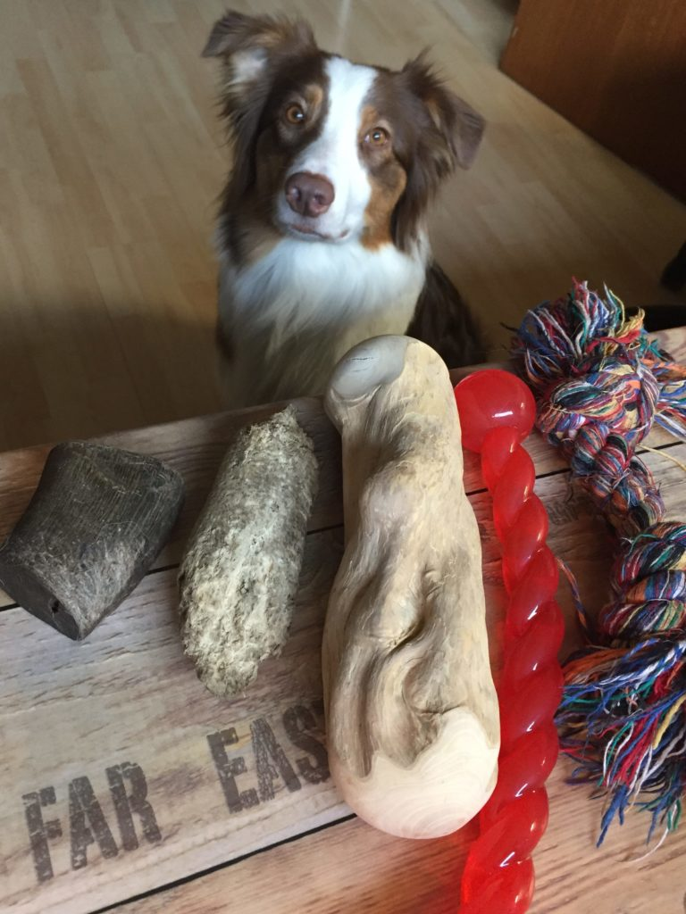 Kauspielzeug - Kausnack - Hund