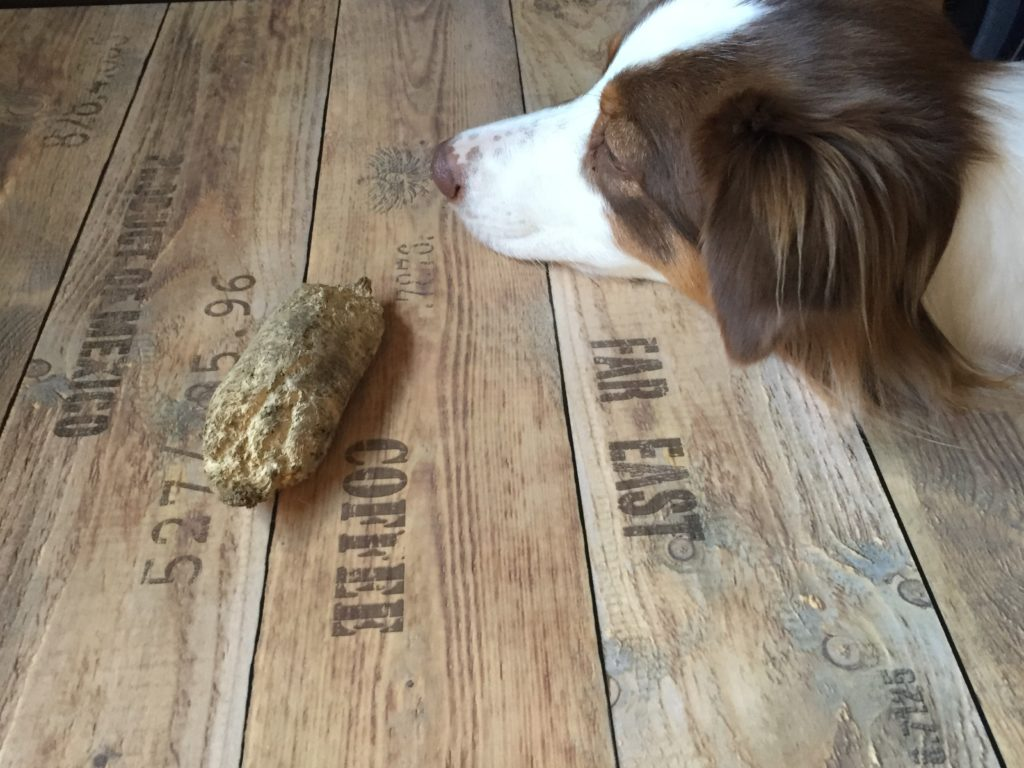 Erfahrungsbericht Kaffeeholz - Kauartikel für Hunde im Test - hundtastisch.de - Kauholz